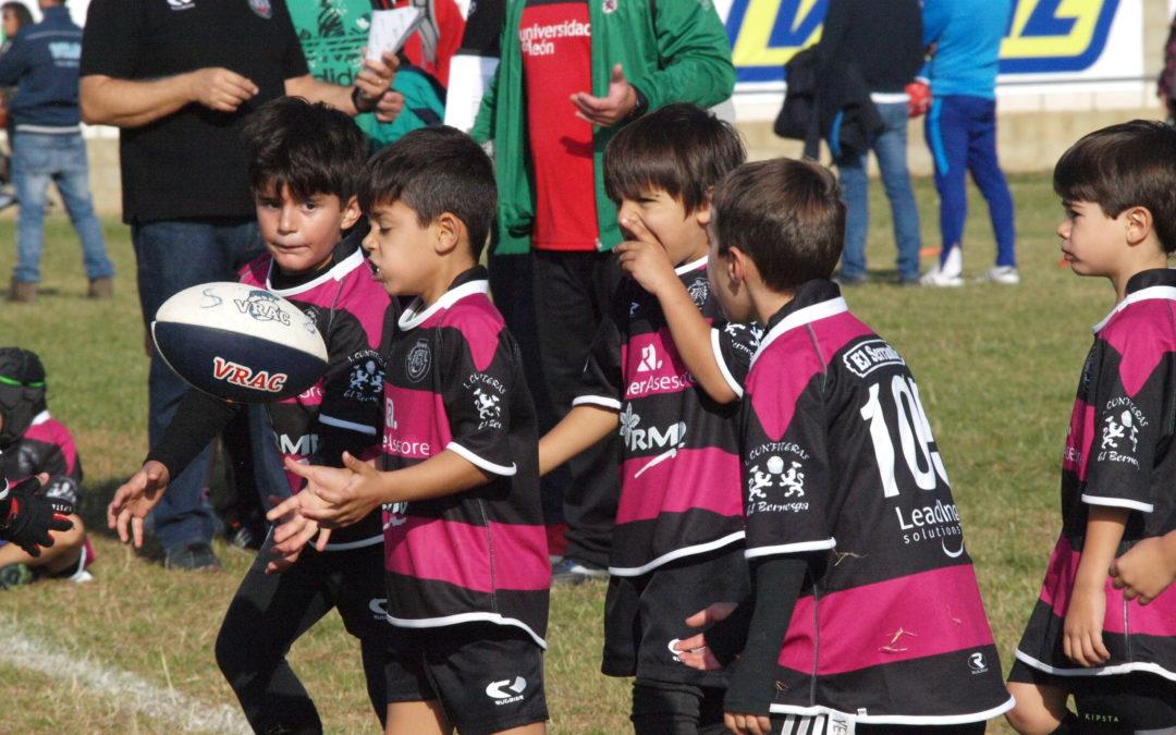 Los sub-6, sub-8 y sub-10 de la Escuela Robher Asesores León Rugby Club, rumbo a Ponferrada