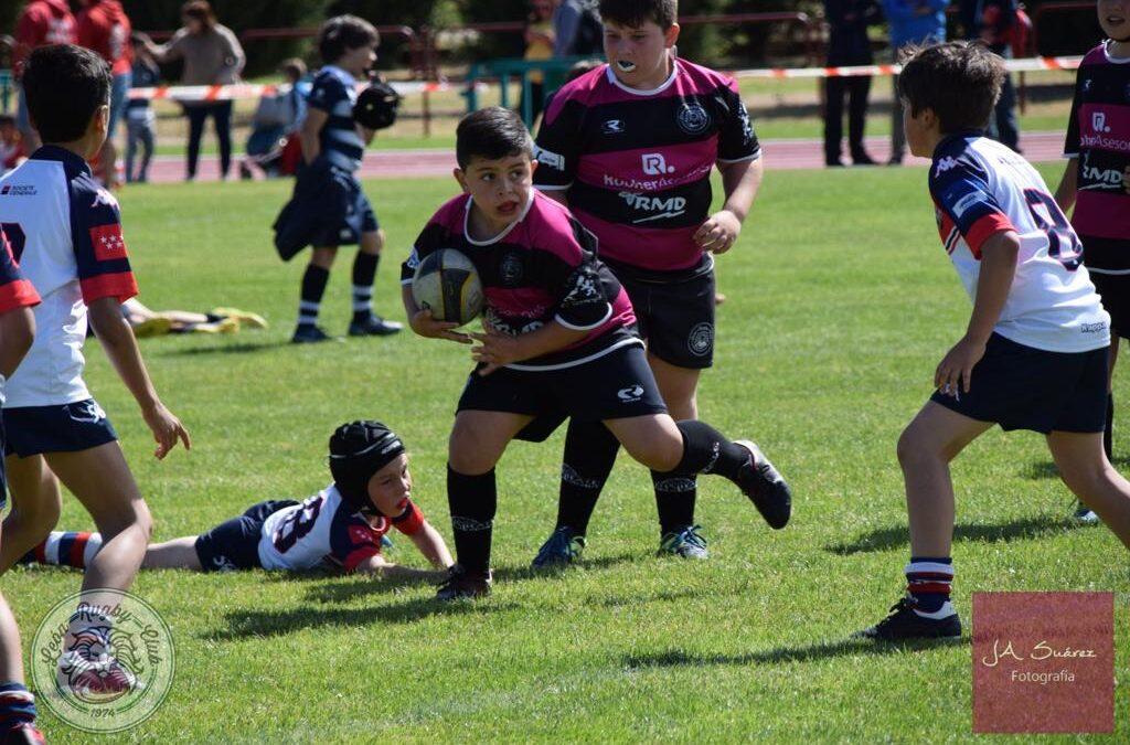 La Escuela Robher Asesores León Rugby Club destaca entre las mejores canteras de España